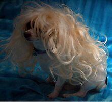 Dolly Parton by ShootinMickey