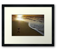 Butterfly on the sea Framed Print