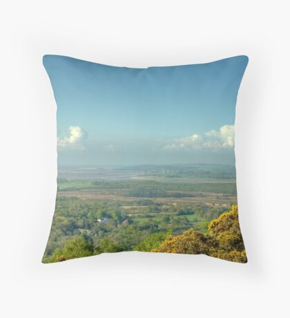 Massicks Viewpoint..The View Throw Pillow