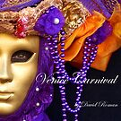 "New Book   ""Venice Carnival"" by DavidROMAN"