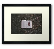 Plato's abstract bookmark Framed Print