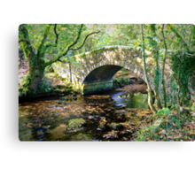 Humpback Bridge Canvas Print