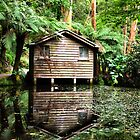 The Dandenong Boathouse by Natasha M