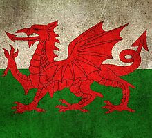 Old and Worn Distressed Vintage Flag of Wales by Jeff Bartels