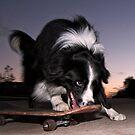 Skateboarding Yogi style by annibels