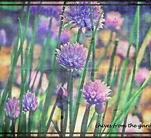 Chives From The Garden by Sharon A. Henson