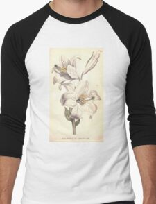 The Botanical magazine, or, Flower garden displayed by William Curtis V7 V8 1794 0133 Lilium Candium, White Lilly Men's Baseball ¾ T-Shirt