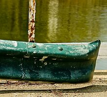 green and rusty  by cesanciano