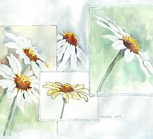 The Little Daisy  by Maree  Clarkson