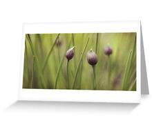 Pastel Chives Greeting Card