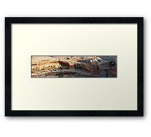 Anasazi Ruins at Butler Wash Framed Print