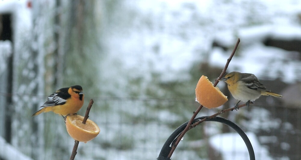 Two for Tea by Barb Miller