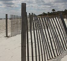 Beach Fence by photobynumbers