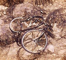 Abandoned Bike - Impressions by Susie Peek