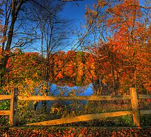 Mending Fences by Ron Waldrop