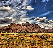 Zions by Misti Love