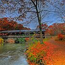Bridge In Autumn by Ron Waldrop