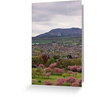 The View South Greeting Card