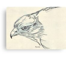 Black-shouldered Kite in Charcoal  Canvas Print