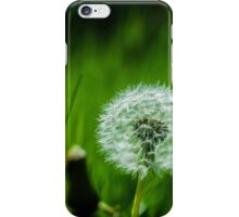 Dandelion with Gras iPhone Case/Skin