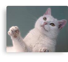 Talk to the Paw!!  Canvas Print