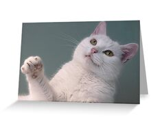 Talk to the Paw!!  Greeting Card