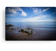 The Black Sand Beach Canvas Print