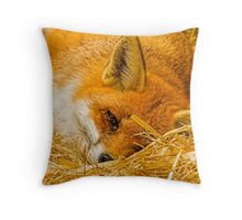 Fox in the straw Throw Pillow