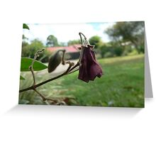 wilted Greeting Card