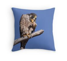 Distinguished Raptor Throw Pillow