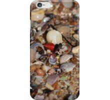 A Shell of a Beach iPhone Case/Skin