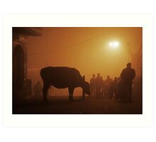 Fragments of Richness: An Indian Expose - shadowplay Art Print