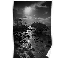 The Mangrove Badlands Poster