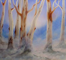 Ghostgum Mist by John Cocoris