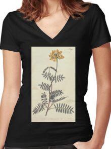The Botanical magazine, or, Flower garden displayed by William Curtis V11 V12 1797 1798 0142 Hippocrepis Balearica Shrubby Hose Shoe Vetch Women's Fitted V-Neck T-Shirt