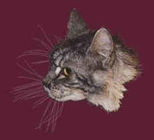 Maine Coon Cat Head by dogplay