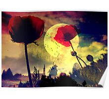 poppy dream  Poster