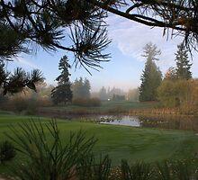 morning mist by gabryshak