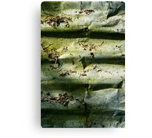 Corrugation Canvas Print