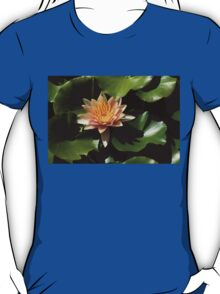 Exotic Colors - A Soft Coral Waterlily T-Shirt