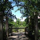Arboretum Overlook by Jaclyn Hughes
