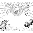 Scarab beetles and the ancient Egyptian god 'Khepri' by Laura Grogan