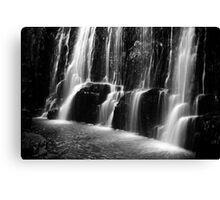 Guide Falls in monochrome, in Tasmania Canvas Print