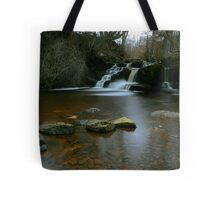 Lower Hareshaw Linn Tote Bag