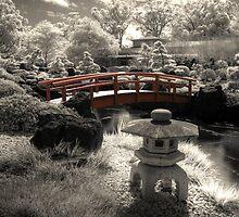 Gardens Infrared by Michael Lynch