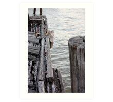 Old Wharf Timbers Art Print