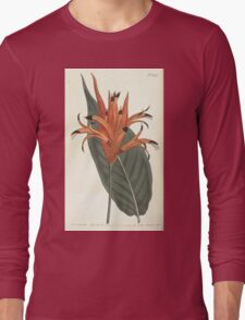 The Botanical magazine, or, Flower garden displayed by William Curtis V13 V14 1799 1800 0160 Heliconia Psittacorum Parrot Beaked Heliconia Long Sleeve T-Shirt