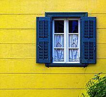 Window by spyrostav