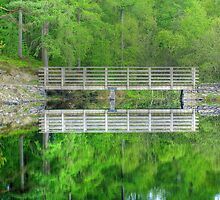 Reflections of a Dam by Jamie  Green