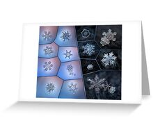 Snowflake macro collage Greeting Card